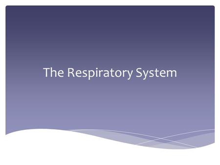 The Respiratory System. Parts and Structure of the Respiratory System.