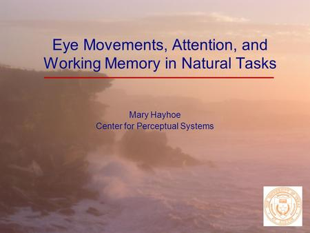 Eye Movements, Attention, and Working Memory in Natural Tasks Mary Hayhoe Center for Perceptual Systems.