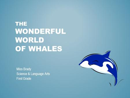 THE WONDERFUL WORLD OF WHALES Miss Brady Science & Language Arts First Grade.