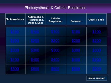 Photosynthesis & Cellular Respiration $100 $200 $300 $400 $500 $100$100$100 $200 $300 $400 $500 Photosynthesis FINAL ROUND Autotrophs & Heterotrophs, Odds.