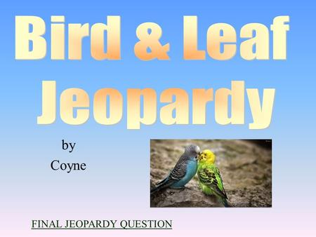 by Coyne FINAL JEOPARDY QUESTION 100 200 400 300 400 Black Birds & Some A little Gray Birds w/Dash of Color Leaf Identification 300 200 400 200 100 500.