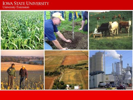 Mission Agriculture and Natural Resources Extension Engage clients and deliver research- based knowledge and educational programs.