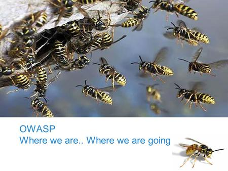 OWASP Foundation OWASP Where we are.. Where we are going.