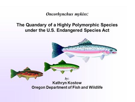 Oncorhynchus mykiss : The Quandary of a Highly Polymorphic Species under the U.S. Endangered Species Act by: Kathryn Kostow Oregon Department of Fish and.
