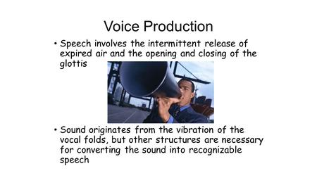 Voice Production Speech involves the intermittent release of expired air and the opening and closing of the glottis Sound originates from the vibration.