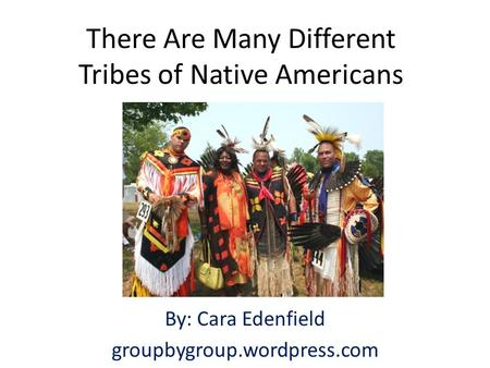 There Are Many Different Tribes of Native Americans By: Cara Edenfield groupbygroup.wordpress.com.