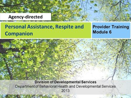 Personal Assistance, Respite and Companion Division of Developmental Services Department of Behavioral Health and Developmental Services 2013 Provider.