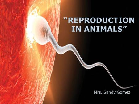 """REPRODUCTION IN ANIMALS"" Mrs. Sandy Gomez. REPRODUCTION  Requires only one parent (Adnavtage)  Takes place faster  Less genetic diversity (Disadvantage)"