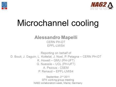 Microchannel cooling Alessandro Mapelli CERN PH-DT EPFL-LMIS4 Reporting on behalf of D. Bouit, J. Daguin, L. Kottelat, J. Noel, P. Petagna – CERN PH-DT.