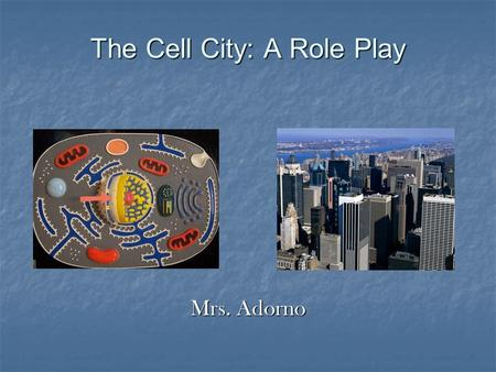 The Cell City: A Role Play Mrs. Adorno. Do Now : Why do you think these cells look so different from one another?