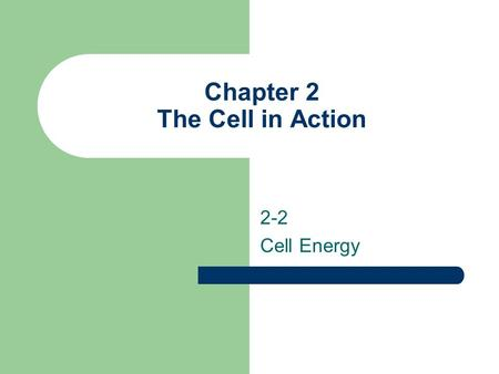 Chapter 2 The Cell in Action 2-2 Cell Energy. Essential Questions Describe photosynthesis and cellular respiration Compare cellular respiration with fermentation.