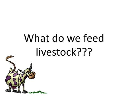 What do we feed livestock???. Major Nutrients Water Protein Carbohydrates Minerals Vitamins Fats and Oils.