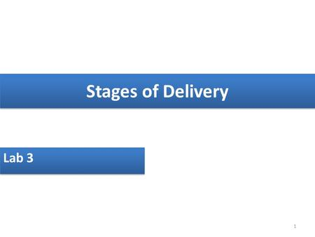 Stages of Delivery Lab 3 1. Introduction The birth of child is a special and unique experience. No two deliveries are identical, and there is no way to.