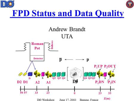 FPD Status and Data Quality Andrew Brandt UTA Q4 D S Q3S A1A2 P 1 UP p p Z(m) D1 Detector Bellows Roman Pot 233359 33230 57 P 2 OUT Q2 P 1 DN P 2 IN D2.