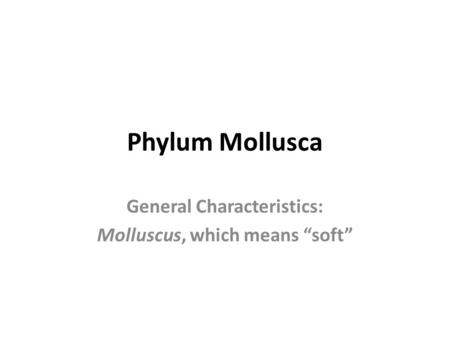 "Phylum Mollusca General Characteristics: Molluscus, which means ""soft"""