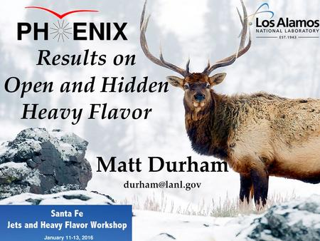 Matt Durham Results on Open and Hidden Heavy Flavor.