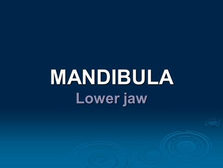 MANDIBULA Lower jaw.  Anatomy (repetition)  Widespread description and clinical notes  Dentoalveolar topography: - transverse asymmetry of alveolus.