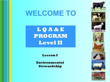 L Q A & E PROGRAM Level II Lesson 5 Environmental Stewardship WELCOME TO.
