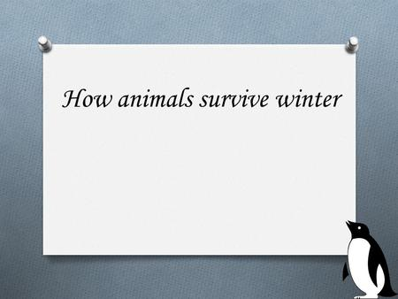 How animals survive winter. What do animals do during the winter? O Hibernate.