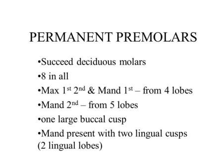 PERMANENT PREMOLARS Succeed deciduous molars 8 in all Max 1 st 2 nd & Mand 1 st – from 4 lobes Mand 2 nd – from 5 lobes one large buccal cusp Mand present.