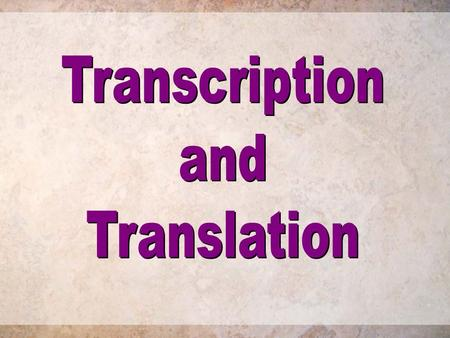 Transcription and Translation The Objective : To give information about : 1- The typical structure of RNA and its function and types. 2- Differences between.