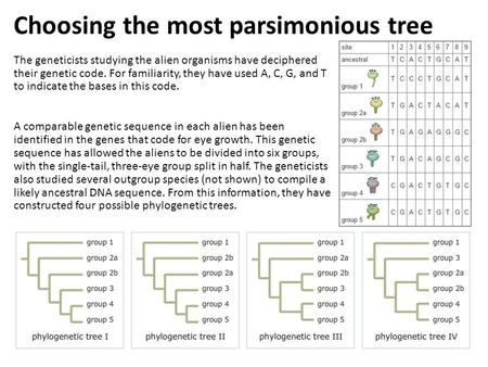Choosing the most parsimonious tree The geneticists studying the alien organisms have deciphered their genetic code. For familiarity, they have used A,