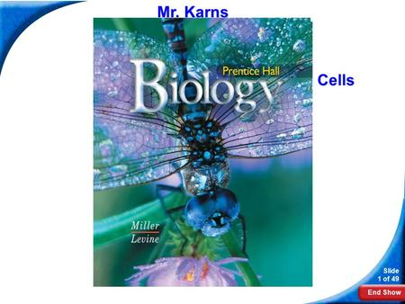 End Show Slide 1 of 49 Biology Mr. Karns Cells. End Show Slide 2 of 49 7-2 Eukaryotic Cell Structure.