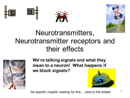 Neurotransmitters, Neurotransmitter receptors and their effects