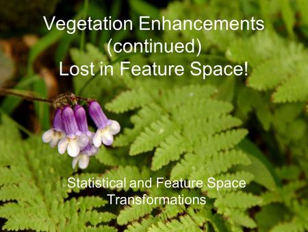Vegetation Enhancements (continued) Lost in Feature Space! Statistical and Feature Space Transformations.