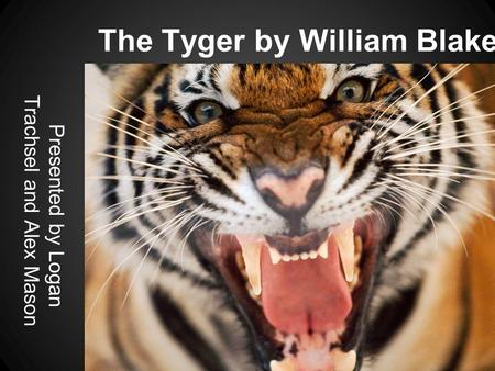 compare life of pi to the tyger poem by william blake Comparison and contrast of william blake's poems introduction exemplified his passion for children through his many poems blake lived in london most of his life and many fellow literati viewed him as eccentric in the poem the tyger by william blake.