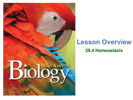 Lesson Overview Lesson OverviewHomeostasis Lesson Overview 28.4 Homeostasis.