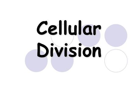 Cellular Division. Cell Division All cells are derived from pre-existing cells All cells are derived from pre-existing cells New cells are produced for.