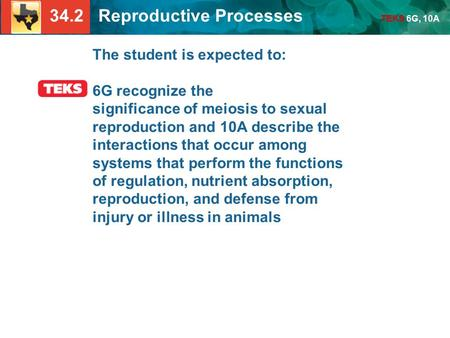 34.2 Reproductive Processes TEKS 6G, 10A The student is expected to: 6G recognize the significance of meiosis to sexual reproduction and 10A describe the.