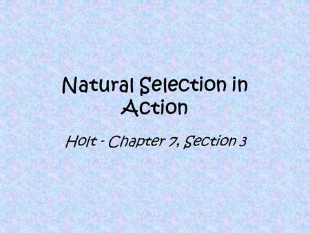 Natural Selection in Action Holt - Chapter 7, Section 3.