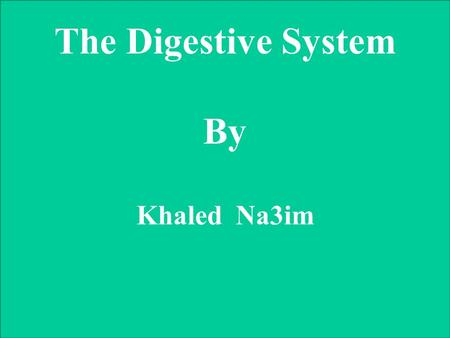 The Digestive System By Khaled Na3im. The Digestive System.