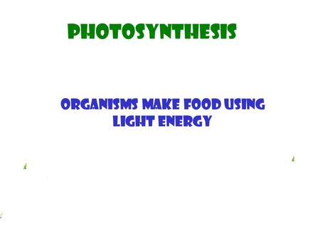 Photosynthesis Organisms make food using light energy.