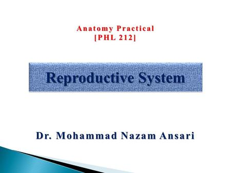 Dr. Mohammad Nazam Ansari Reproductive System Anatomy Practical [PHL 212]