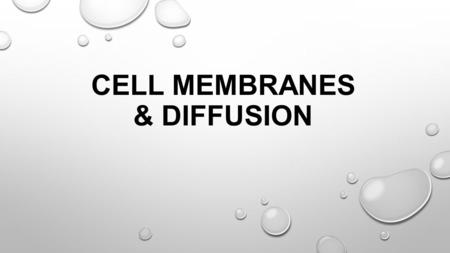 CELL MEMBRANES & DIFFUSION MIXTURE TWO OR MORE ELEMENTS THAT ARE PHYSICALLY MIXED TOGETHER.