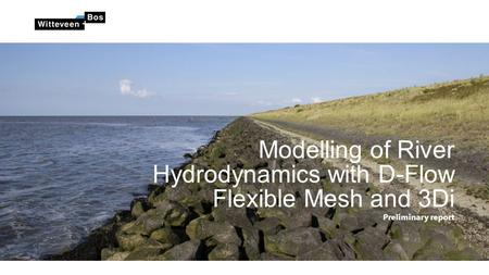 Modelling of River Hydrodynamics with D-Flow Flexible Mesh and 3Di Preliminary report.