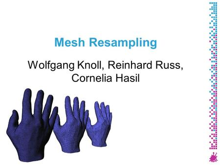 Mesh Resampling Wolfgang Knoll, Reinhard Russ, Cornelia Hasil 1 Institute of Computer Graphics and Algorithms Vienna University of Technology.