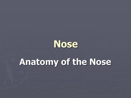 Nose Anatomy of the Nose. External nose External nose It is a projecting triangular pyramid directed downwards. It has apex, root connected to the forehead.