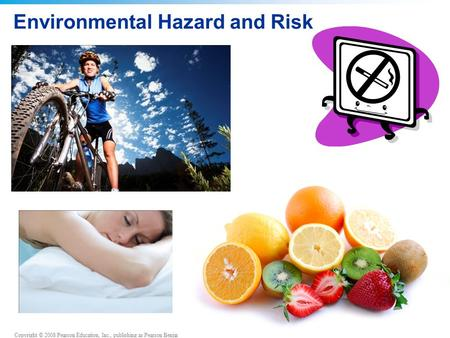 Copyright © 2008 Pearson Education, Inc., publishing as Pearson Benjamin Cummings Environmental Hazard and Risk.