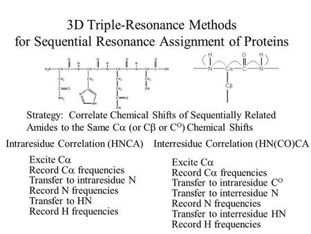 3D Triple-Resonance Methods for Sequential Resonance Assignment of Proteins Strategy: Correlate Chemical Shifts of Sequentially Related Amides to the Same.