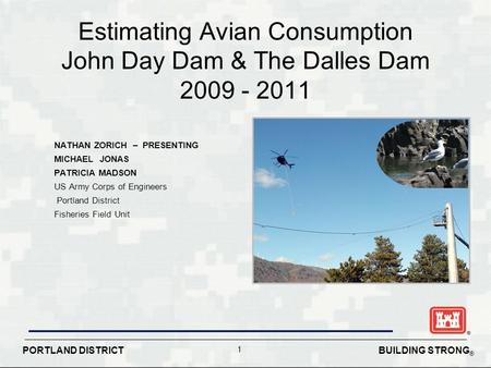 BUILDING STRONG ® PORTLAND DISTRICT 1 Estimating Avian Consumption John Day Dam & The Dalles Dam 2009 - 2011 NATHAN ZORICH – PRESENTING MICHAEL JONAS PATRICIA.