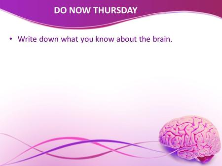 DO NOW THURSDAY Write down what you know about the brain.