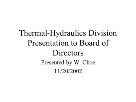 Thermal-Hydraulics Division Presentation to Board of Directors Presented by W. Choe 11/20/2002.