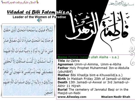 Leader of the Women of Paradise