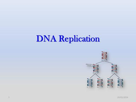 DNA Replication 20/02/20161. 2 DNA replication is central to life and to evolution; in which the stored genomic information is handed down to the next.