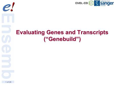 "1 of 28 Evaluating Genes and Transcripts (""Genebuild"")"