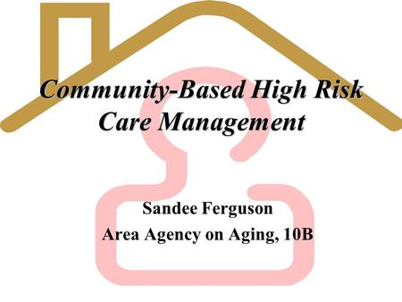 Community-Based High Risk Care Management Sandee Ferguson Area Agency on Aging, 10B.
